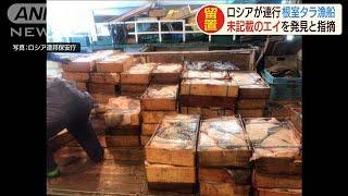 連行した漁船から未記載のエイ ロシアが発表(20/01/16)