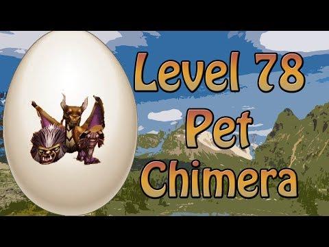 wizard101 lvl 78 pets