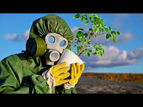 Опасность ГМО прокомментировал эксперт