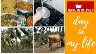 Morning routine in Tamil | A day in my village | Native special | Make in Kitchen