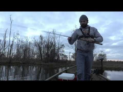 Bass Fishing South Louisiana Feb 1, 2020