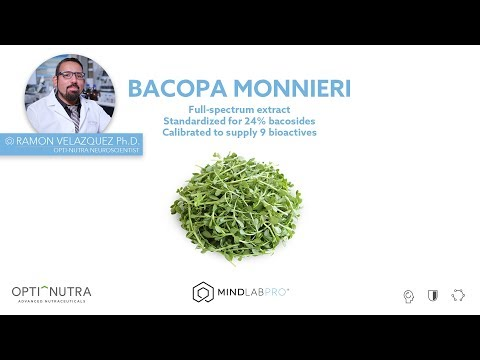 bacopa-monnieri-with-dr.-ramon-velazquez,-ph.d.-|-mind-lab-pro®