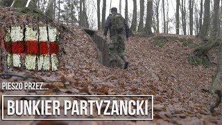 Leśny bunkier, partyzanci z Gryfa, kaszubskie jaskinie #wyprawapiesza #pomorskie