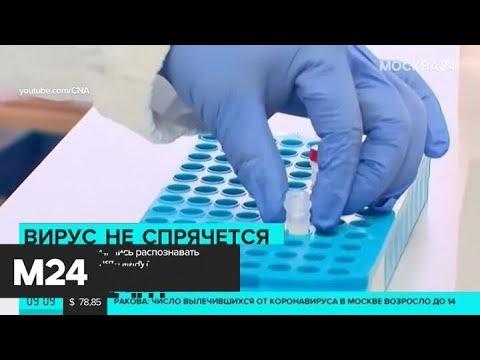 В Сингапуре научились распознавать коронавирус за пять минут - Москва 24