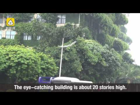 Green building? High-rise covered with plants is seen in south China
