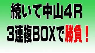 【ヤング競馬予想研究会】中山、阪神開催で5万円使ってどこまで増やせるかやってみた。その②