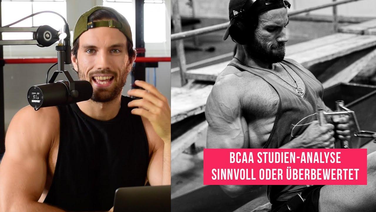 Muskelaufbau Studien