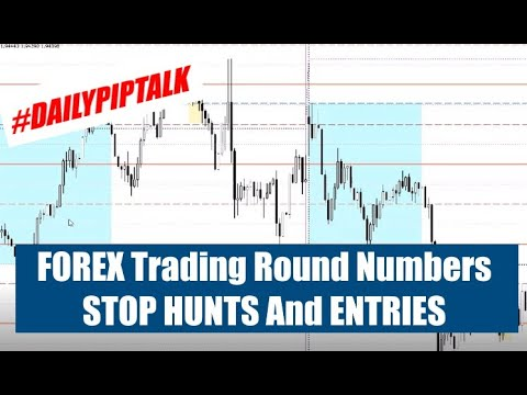 Round forex trader download