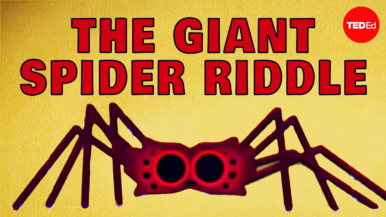 Can you solve the giant spider riddle? - Dan Finkel