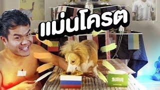 หมาเทพทายผลบอลโลก!!! | Bie The Ska