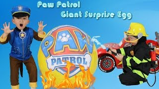 SURPRISE EGGS Blaze and the Monster Machines Battle Blaze VS Crusher + Paw Patrol & Disney Cars Toys