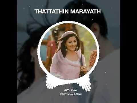 Thattathin Marayath (love Bgm)