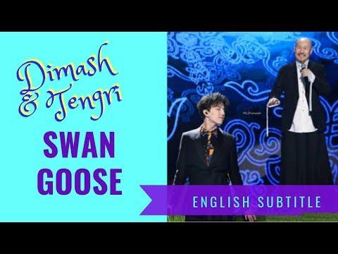 """[Eng Sub] Dimash Kudaibergen & Tengri """"Swan Goose"""" English Subtitle"""