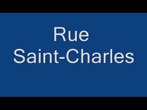 Rue Saint Charles Paris Arrondissement  15e