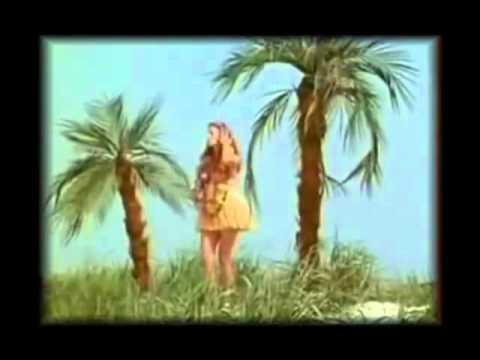 Abba Sitting In The Palmtree funny ▶3:45