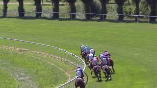 Vidéo de la course PMU PRIX DE LONGCHAMP