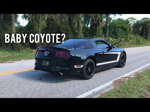 Pure Sound  37 V6 Mustang VERY Unique exhaust