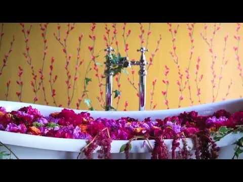 Standing Ovation Video