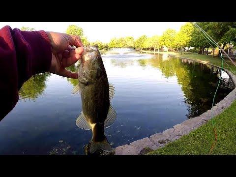 Saturday Morning... Fishing Bethany Creek Pond #coaffieldteam