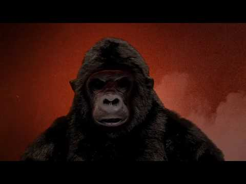 The Ape in Vape - Monkey and the Gorilla