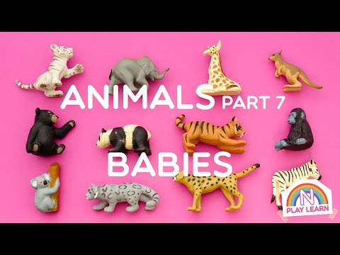 Learning Animals Names and Sounds for Kids - Part 7: Animal Babies