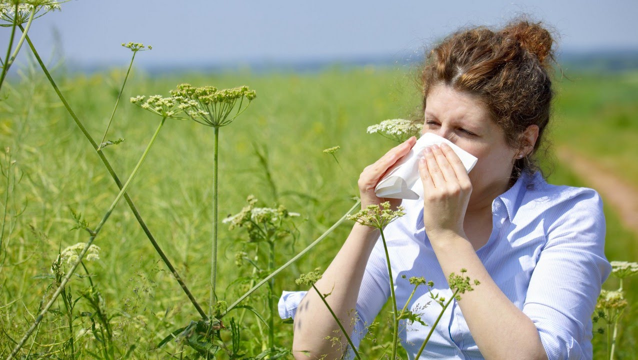 Natural Reme S For Allergies