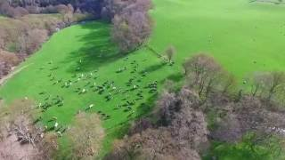 A birds eye view of Caeran Caravan Park, Nr Abergele, North Wales