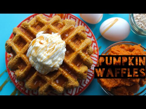 Healthy Breakfast Ideas | Healthy Pumpkin Spice Protein Waffles Recipe