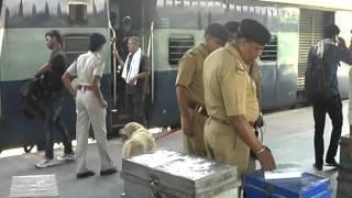 Checking Bomb Dog Squad Railway Police Bilaspur Railway Station C.g.