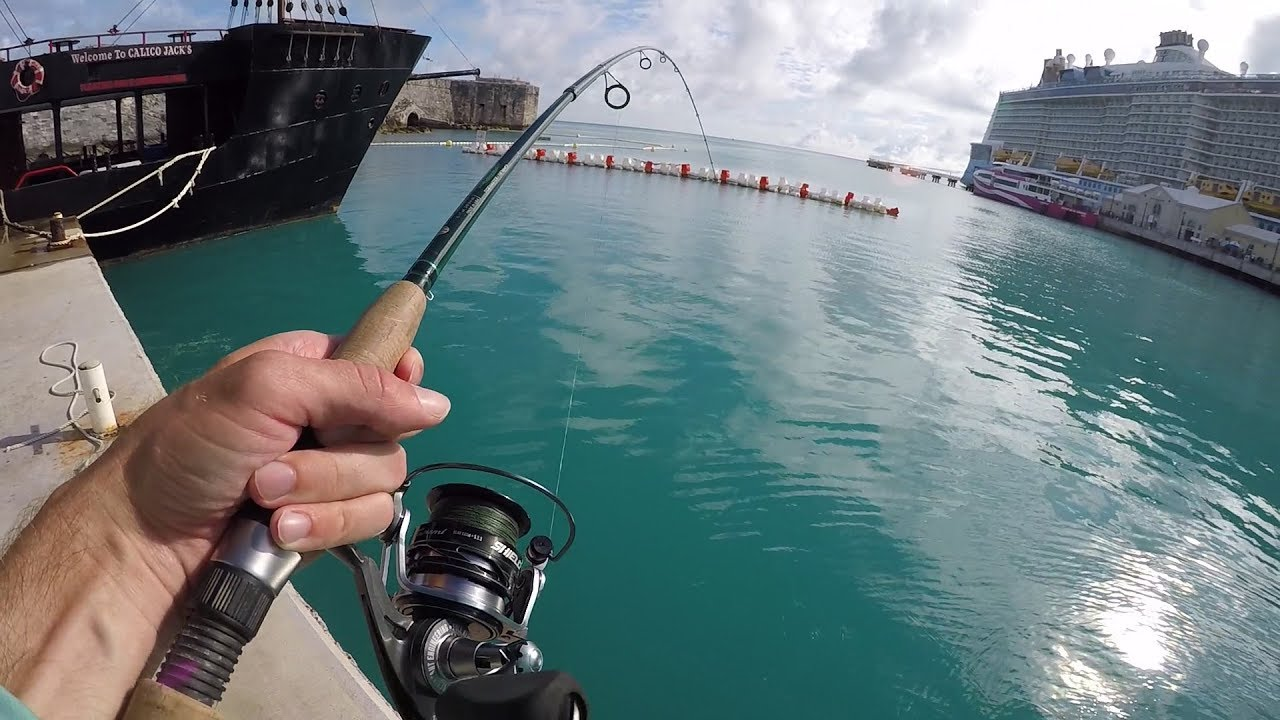 The Bermuda Fishing Experience!