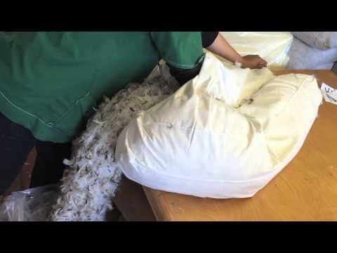Emptying Sagging Fiber:Down Filled Back Cushion 01