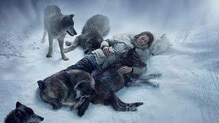Волки спасли человека факты