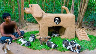 Build Mud Dog House For a Month Old Rescued Puppies In Dog Style
