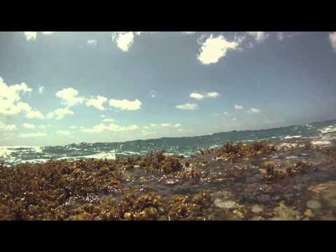 Guam 2012.mov