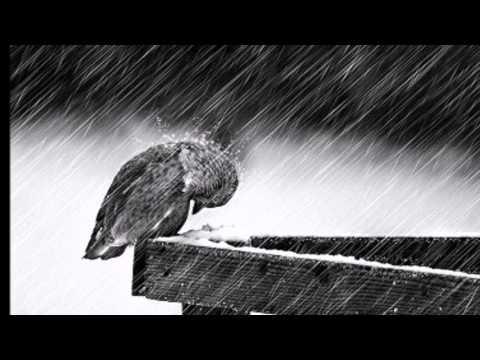 Hamdi Alimoğlu-Yalnızlar şehrinde