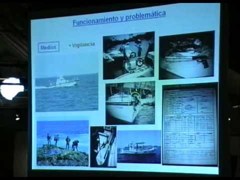 El proceso de creación de una reserva marina: Mallorca-Cala Ratjada
