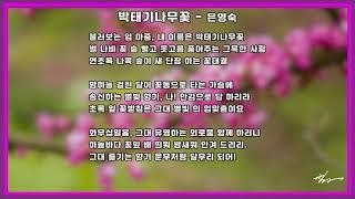 박태기나무꽃  -  은영숙
