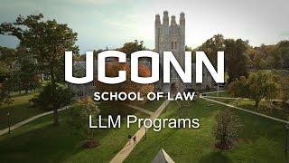 uconn law llm programs