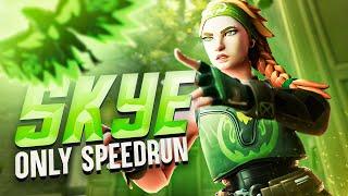 Skye Only Speedrun (Full Series) Valorant