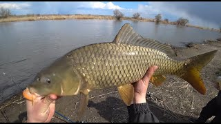 Рыбалка на Глубоком Турунчуке. 091011.04.2021. Рыбалка на Сазана. Большое Течение.