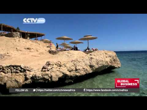 Tourist arrivals in Egypt drop by 45% following Sinai plane crush