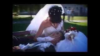 Прогулка свадьба Анатолий и Елена   HD   MPEG4 Video   HD   MPEG4 Video