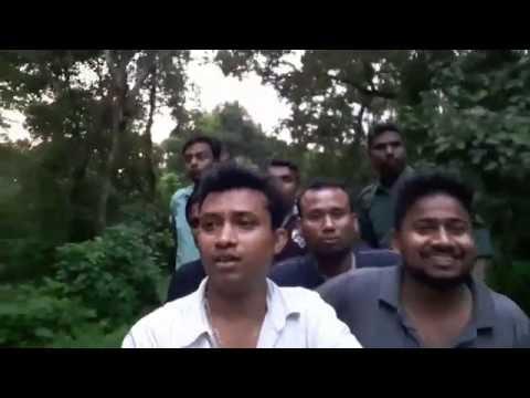 Amazing Chilapata - Gorumara - Buxa - Jayanti  Deep Forest car safari.