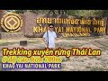 Du lịch Thái Lan - Vườn quốc gia Khao Yai