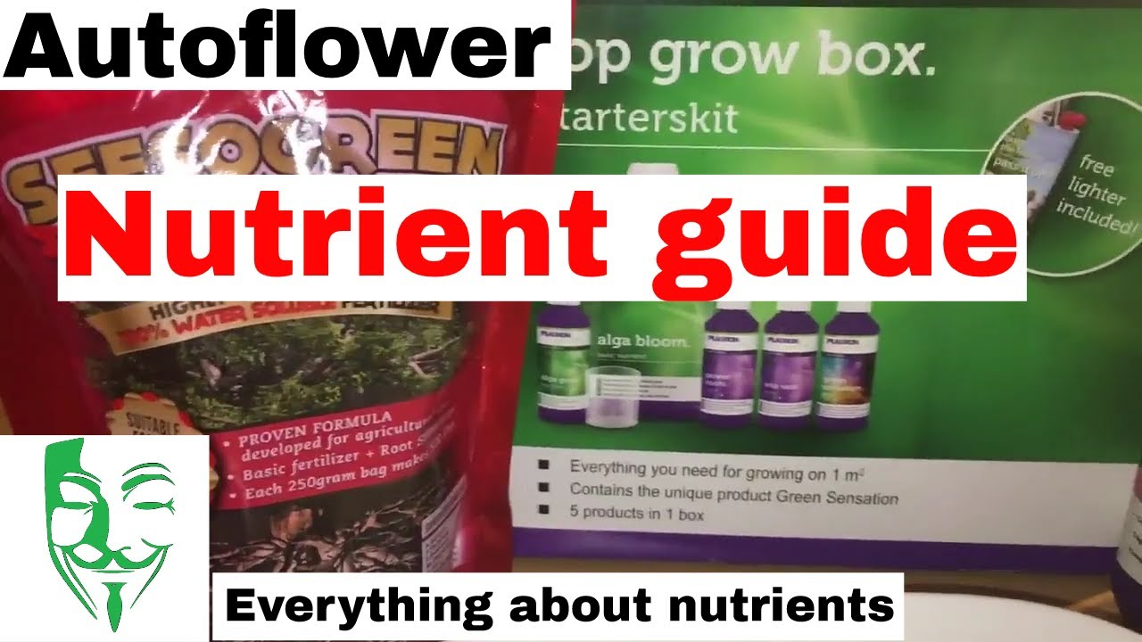 Autoflower Micro grow nutrient COMPLETE HOW TO GUIDE WHEN to use and how  much
