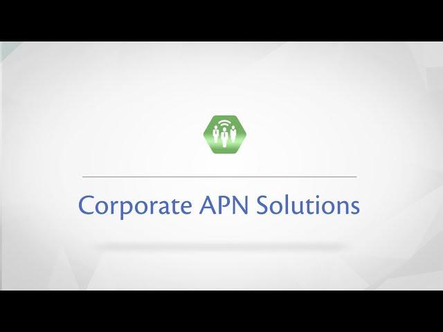 Corporate APN Solutions