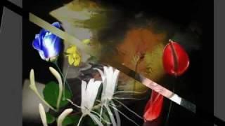 Bông Hoa Vườn Dị Thảo - Hoàng Song Liêm - Anh Bằng - Tâm Hảo. 1-2012