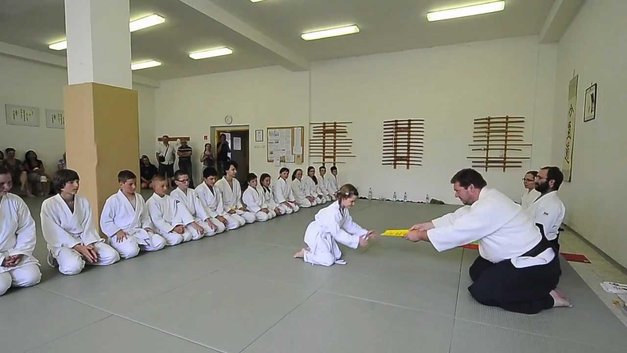 The Aikido FAQ: The Aikido Dojo Guide