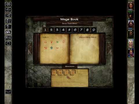 Let's Play Icewind Dale [Enhanced Edition] [22of50] |