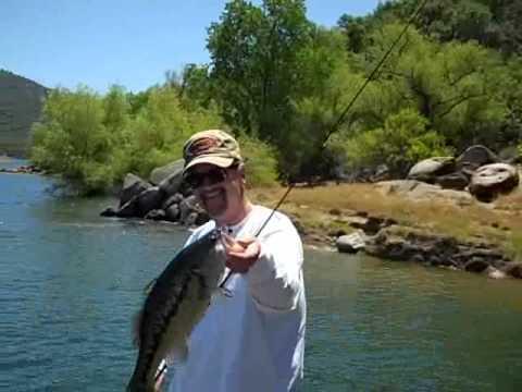 Full Bag Of 3 4 Lb Folsom Lake Bass Youtube